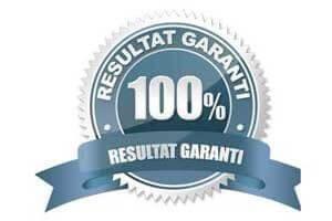 logo 100% réussite